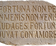 латинское изречение [Не упусти свой шанс, фортуна смелых любит!]